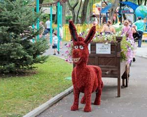 На территории Сафари-парка в Краснодаре можно организовать день рождения ребенка