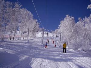 Цены на подьемники в горнолыжном курорте Абзаково лучше смотреть на их официальном сайте