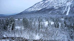 Уникальная экосистема уральских гор и географическое расположение оптимальны для развития ведущих направлений в сфере спортивного вида туризма