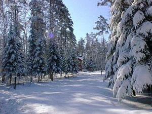 Большая часть горнолыжных курортов и спортивных баз находится недалеко от Москвы