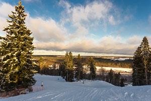 Погодные условия в Ленинградской области позволяют кататься с максимальным комфортом в течение длительного времени