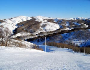 Горнолыжный комплекс «Алтайские Альпы» расположился в живописном районе Восточного Казахстана