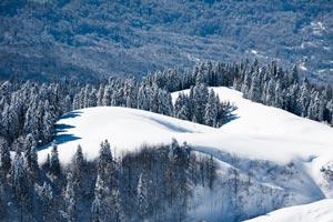 Курорт Красная поляна давно обрел прозвище «Русская Швейцария»