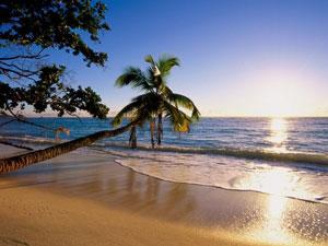 Топ-10 лучших пляжей Гоа в Индии