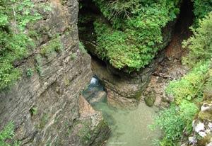 Увлекательная прогулка по заповеднику «Гуамское ущелье»