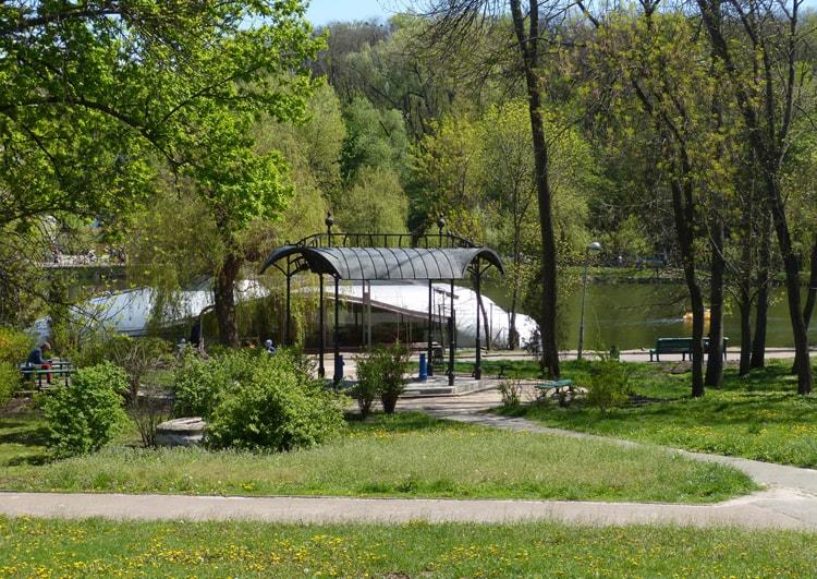 Голосеевский парк, располагающийся рядом с настоящим лесом вдоль Голосеевского проспекта.