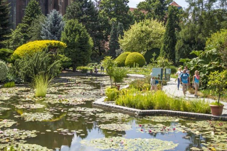 Сейчас парк с обилием разнообразной растительности, красивыми мостиками, фонтанами и скамеечками является одной из главных достопримечательностей Вроцлава.