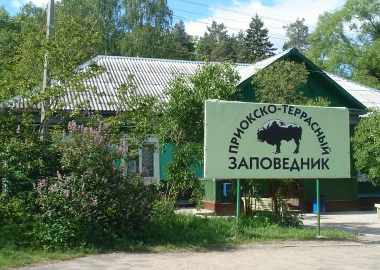 Советуем обратить внимание на Приокско-Террасный биосферный заповедник, находящийся в Серпуховском районе Московской области.