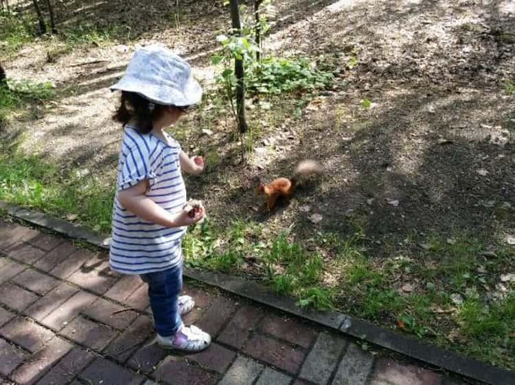 Парк Сайма в Сургуте детям, несомненно, понравится кормить белочек.