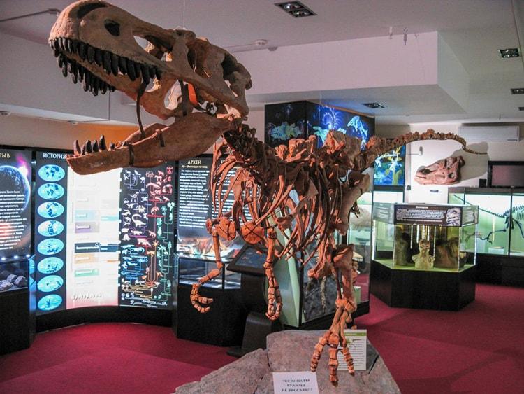 Вятский Палеонтологический музей, историческая достопримечательность Кирова.
