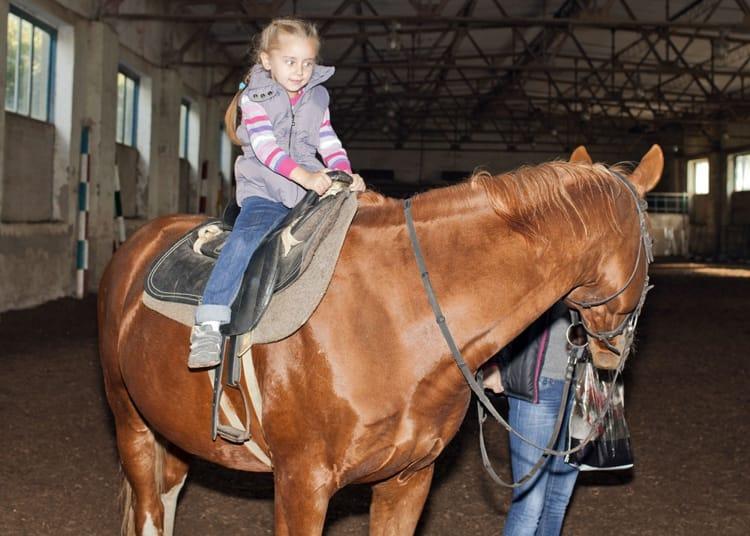 Терский конный завод достопримечательность, где можно взять напрокат лошадей, прокатиться на них и посетить экскурсию по заводу.