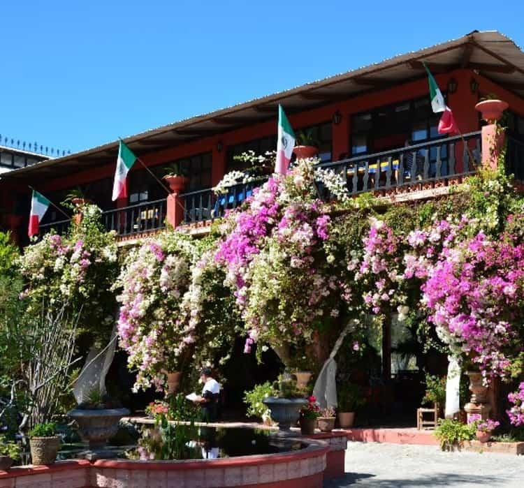 Ботанический сад Пуэрто-Вальярты является одним из самых красивых в Мексике.
