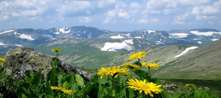 Заповедник «Кузнецкий Алатау» в Кемеровской области в первую очередь славится своими необъятными горными массивами и густыми лесами.