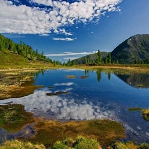 Байкальский заповедник - государственный природный биосферный заповедник, расположенный на юге Бурятской Республики.