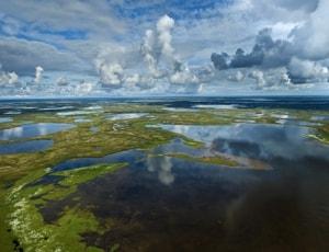 Гыда́нский запове́дник — государственный природный заповедник в Тазовском районе.