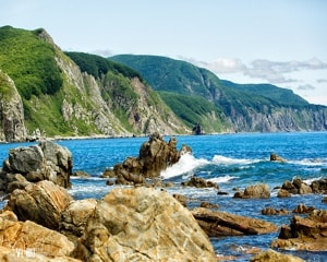 Сихотэ-Алинский заповедник был включен в перечень Всемирного наследия ЮНЕСКО.