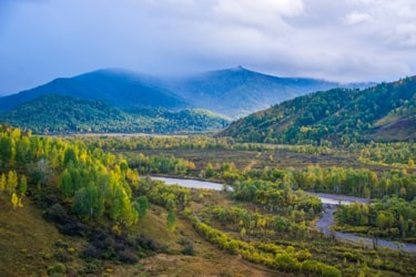 Тигирекский заповедник располагается на Юго-западной части Алтайского края.