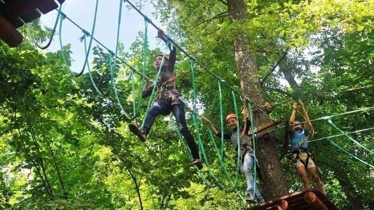 Веревочный парк в воронежском заповеднике очень нравится детям