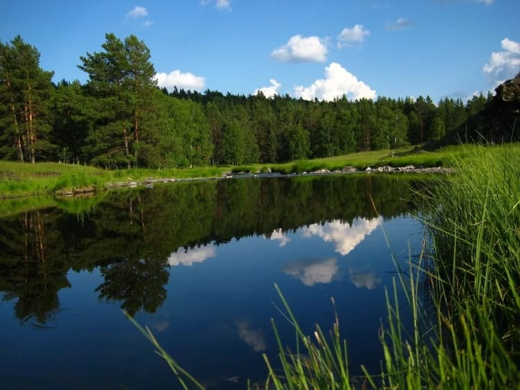 Лето в башкирском заповеднике теплое