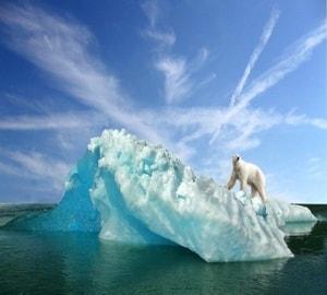Большой арктический заповедник и его природа