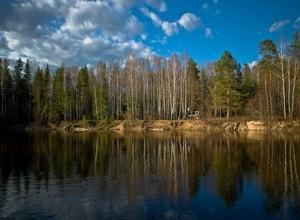Керженский заповедник и его флора и фауна