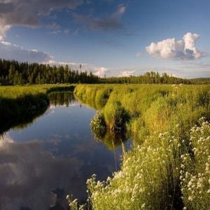 валдайский национальный парк - настоящая гордость Новгородской области