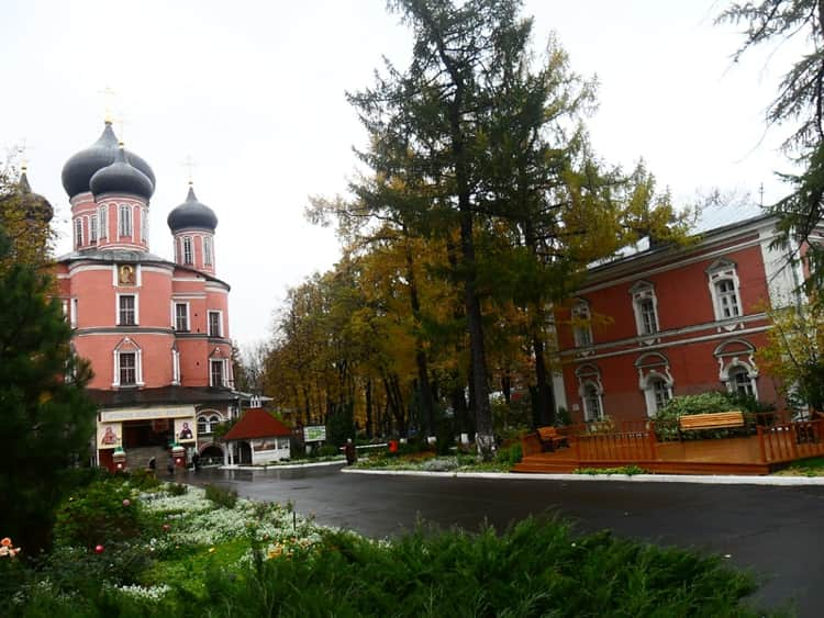 Цветы на территории Покровского монастыря, так как любила святая Матрона