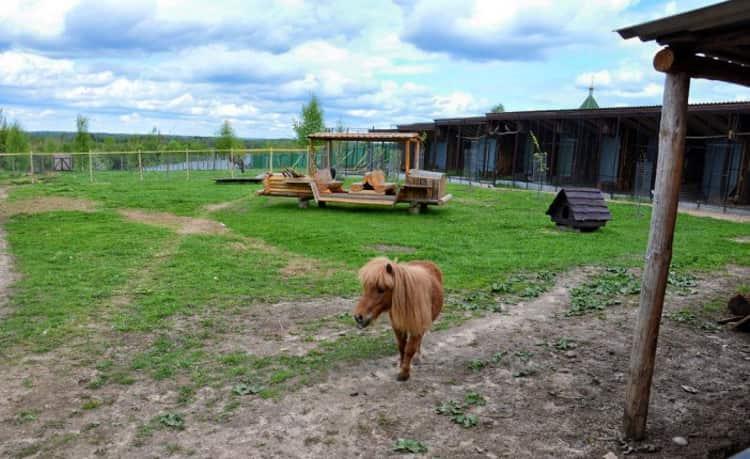 Псков и его достопримечательности, одной с которых является - Экопарк ZooГрад