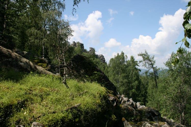 Южно Уральский Заповедник и его фауна