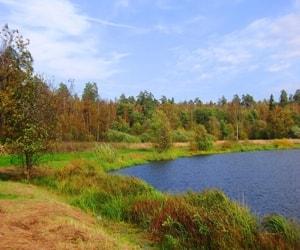 Национальный парк Лосиный остров - один из первых национальных парков в России