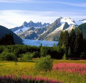 Заповедник Остров Врангеля - государственный природный заповедник, расположенный на территории Чукотского автономного округа